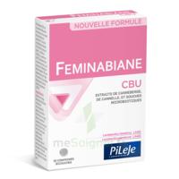 Pileje Feminabiane Cbu 30 Comprimés Bicouches à Toulon