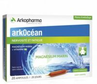 Arkocean Magnesium Marin Solution Buvable Caramel 20 Ampoules/10ml à Toulon