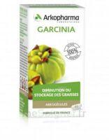 Arkogélules Garcinia Gélules Fl/45 à Toulon