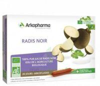 Arkofluide Bio Ultraextract Radis Noir Solution Buvable 20 Ampoules/10ml à Toulon