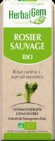 Herbalgem Rosier Sauvage Macerat Mere Concentre Bio 30 Ml à Toulon