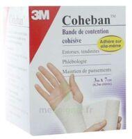 Coheban, Blanc 3 M X 7 Cm à Toulon