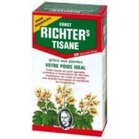 Ernst Richter's Tisane Poids Idéal 20 Sachets à Toulon