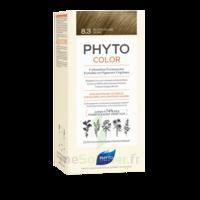 Phytocolor Kit Coloration Permanente 8.3 Blond Clair Doré à Toulon