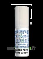 Ricqles Spray Buccal Sans Alcool Menthe 15ml à Toulon