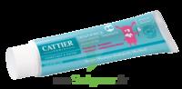 Acheter Dentifrice 2 - 6 ans Goût Framboise - 50 ml à Toulon