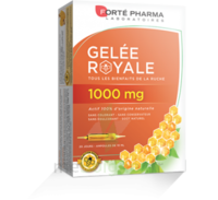 Forte Pharma Gelée Royale 1000 Mg Solution Buvable 20 Ampoules/10ml à Toulon