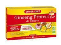 Superdiet Ginseng Gelée Royale Protect Bio Solution Buvable 20 Ampoules/15ml à Toulon