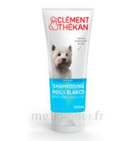 Clément Thékan Shampooing Poils Blancs T/200ml à Toulon