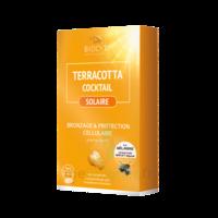 Terracotta Cocktail Solaire Comprimés B/30 à Toulon