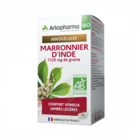 Arkogélules Marronnier D'inde Bio Gélules Fl/45 à Toulon