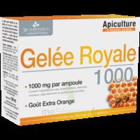 3 Chenes Phytotherapie Familiale Solution Buvable Gelée Royale 1000 10 Ampoules/10ml à Toulon